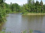 Liesjärvi 6-2011 150